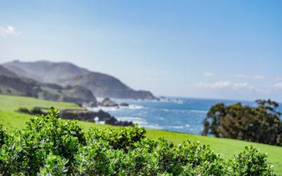 Highway 1 in California: About Beaches, Sunsets, Sea Lions & Whales
