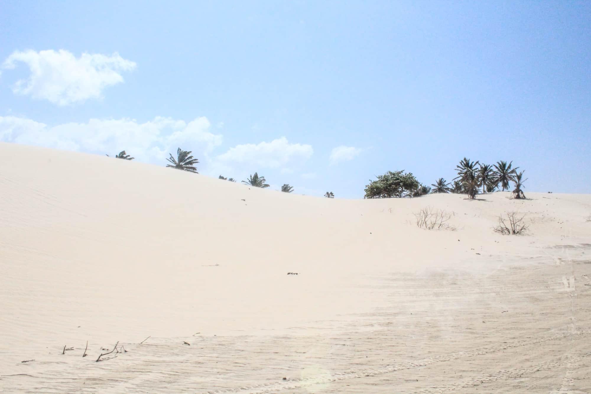 dunes jericoacoara