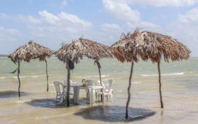 Ein Traum aus Sand in Jericoacoara: Die schönste Oase Brasiliens