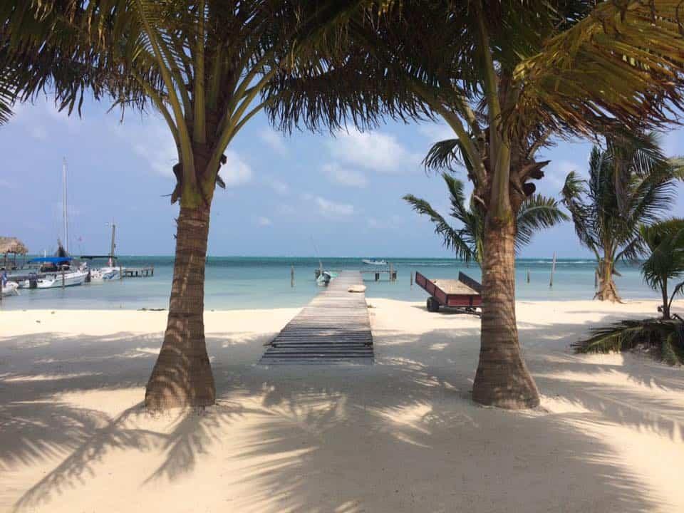 Caye Caulker Belize Barrier Reef