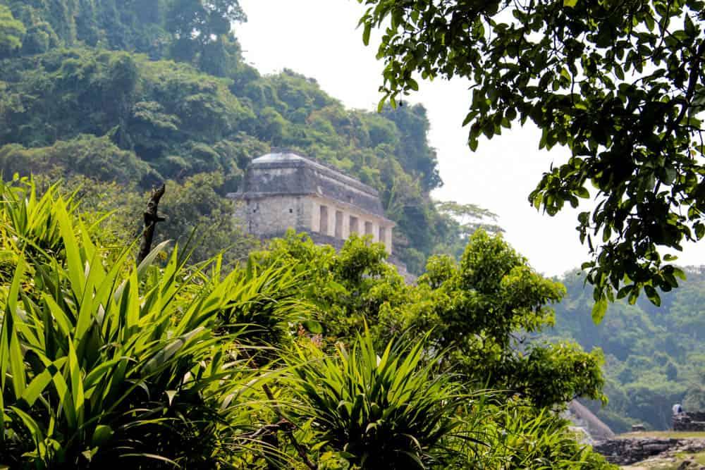 Ruinen durch die Büsche in Palenque