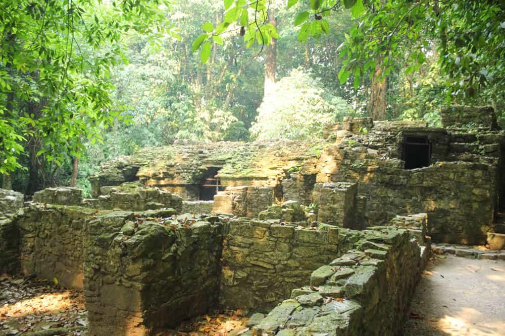 Ruinen in der Idylle Palenque