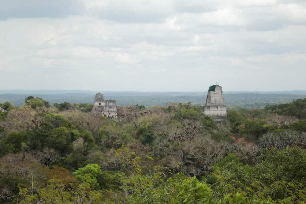 Tikal Ausblick Tempel IV