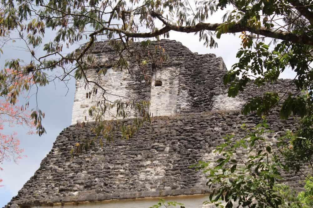 Tikal Maya-Pyramide