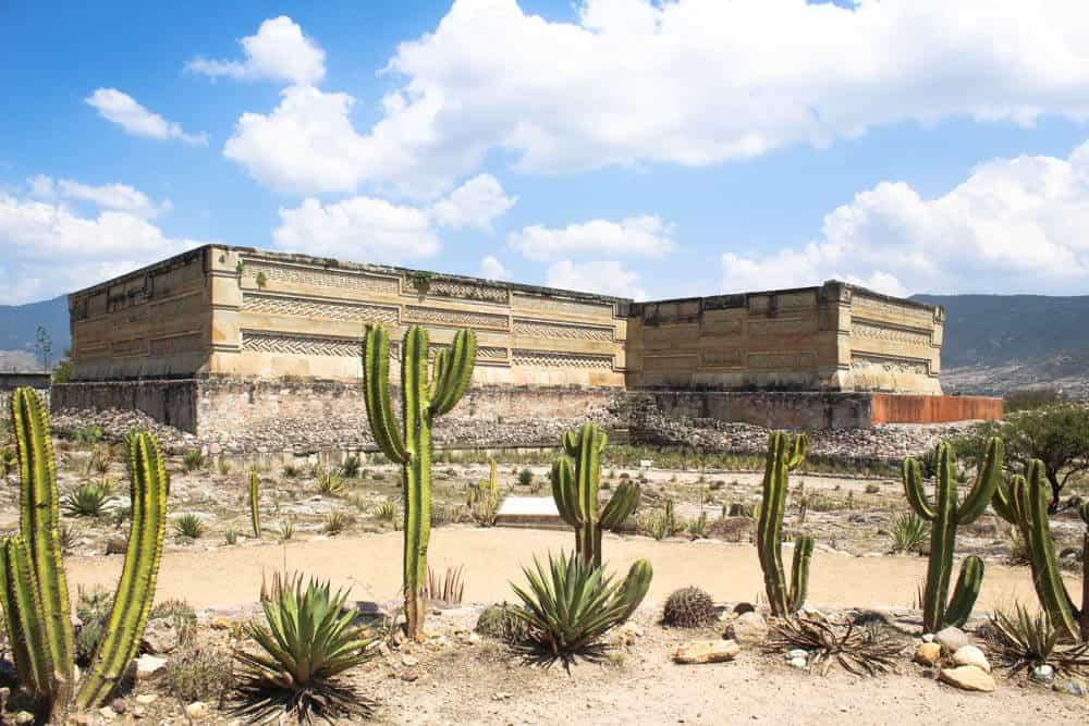 Ruinen und Kakteen in Mitla