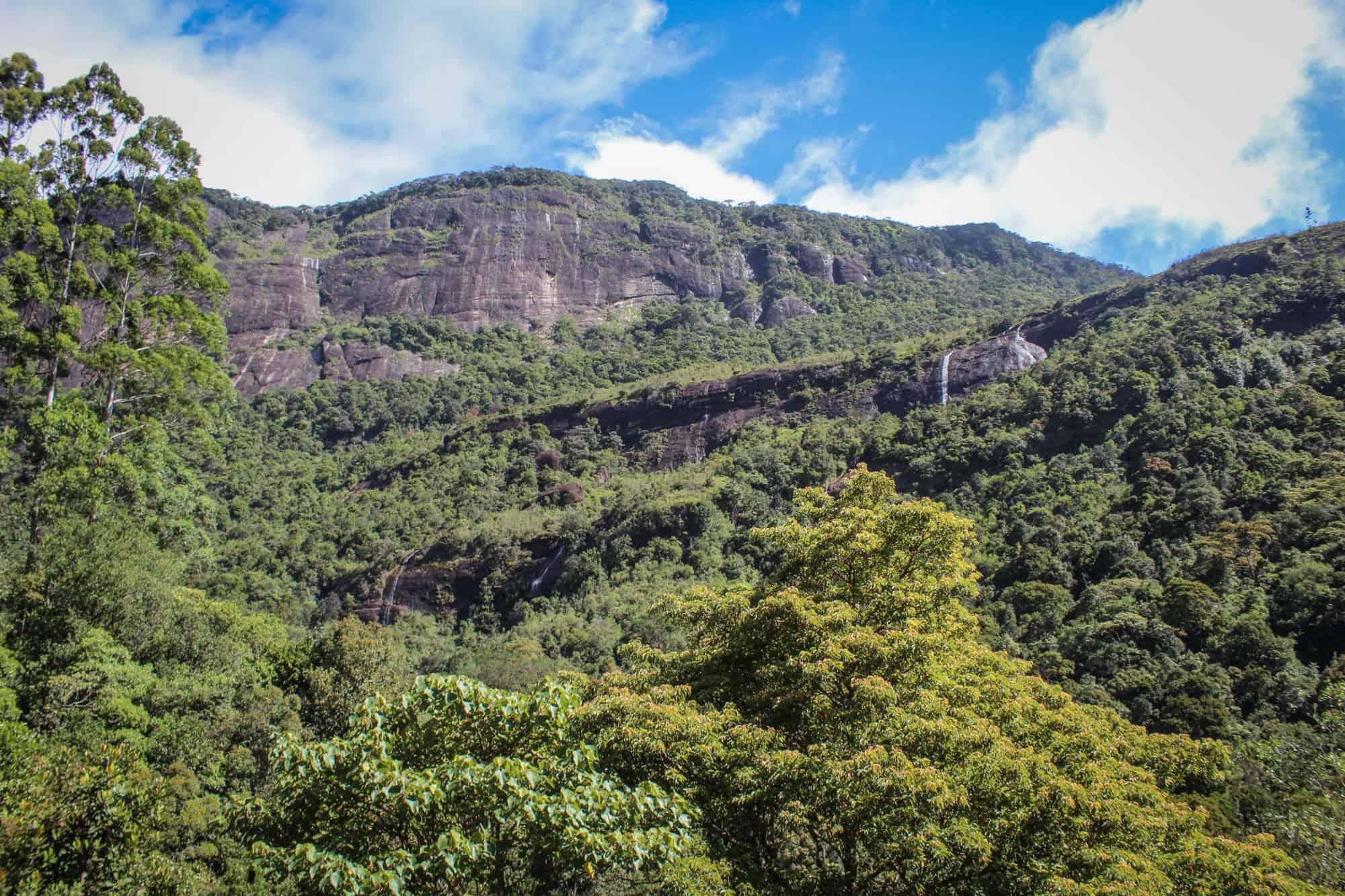 ausblick adams peak
