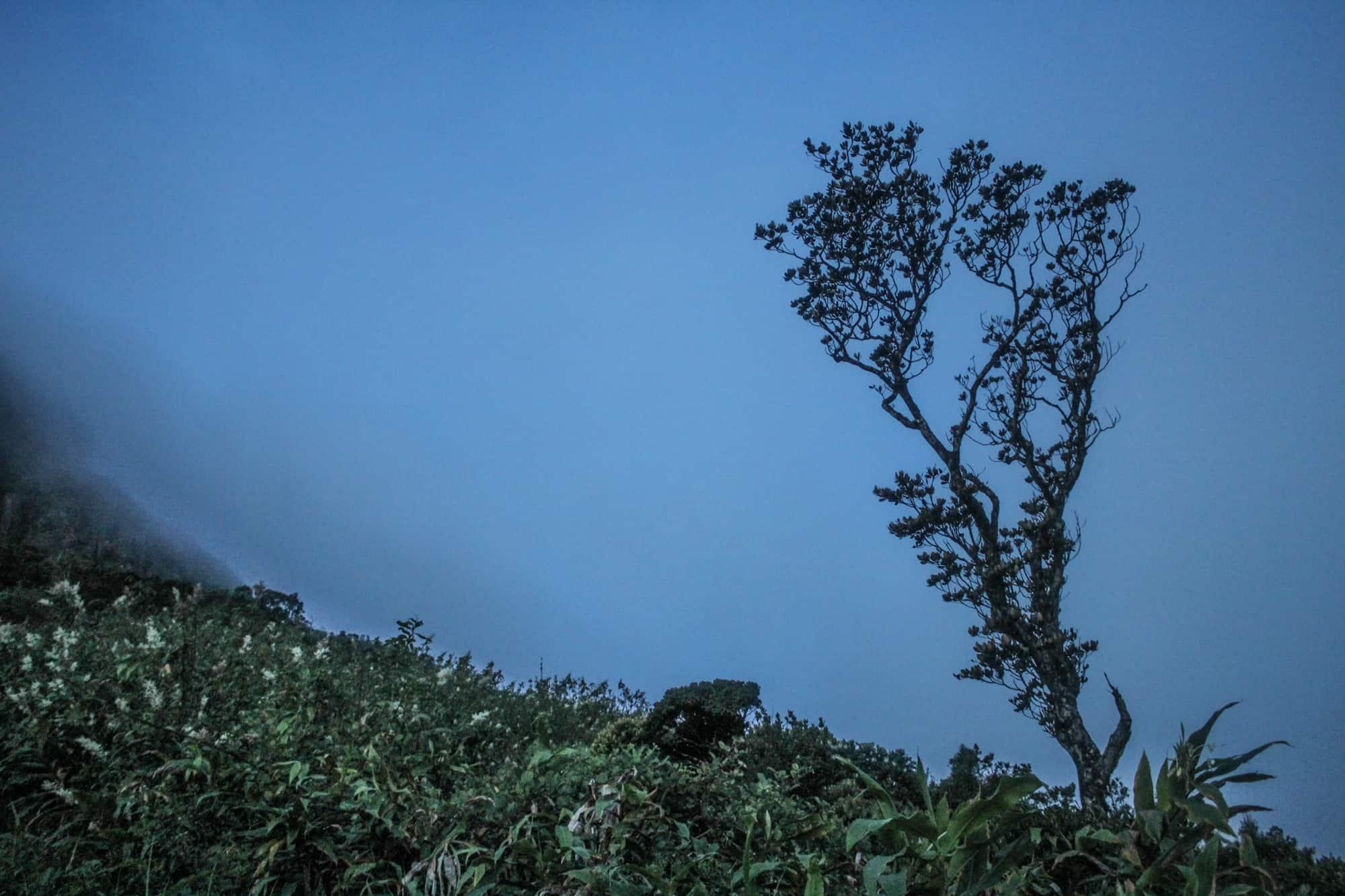 kurz vor sonnenaufgang adams peak