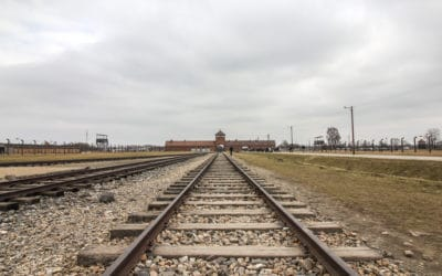Auschwitz in Photos – When Words Are Just Not Enough