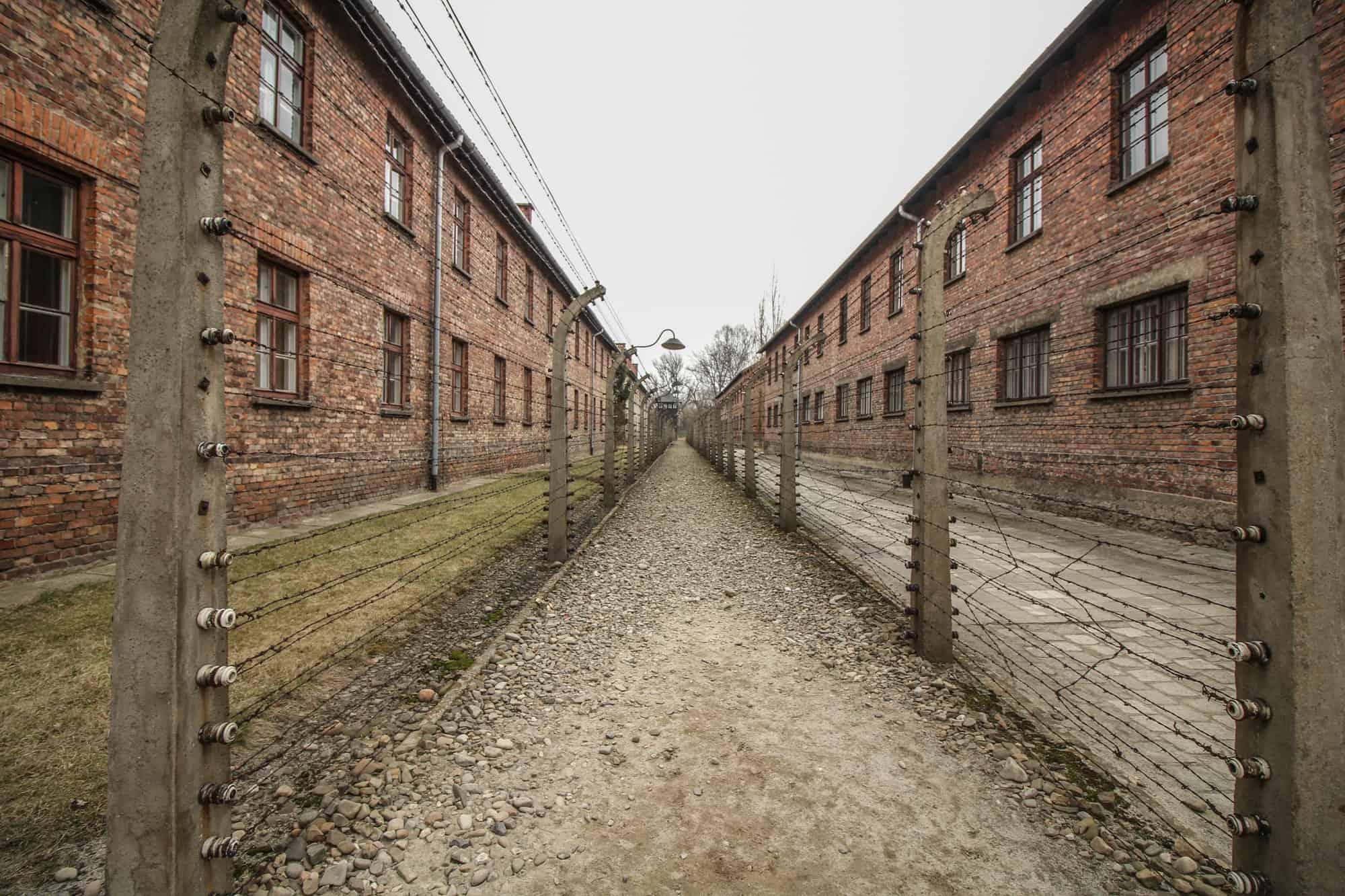 Stacheldrahtzaun Auschwitz 1
