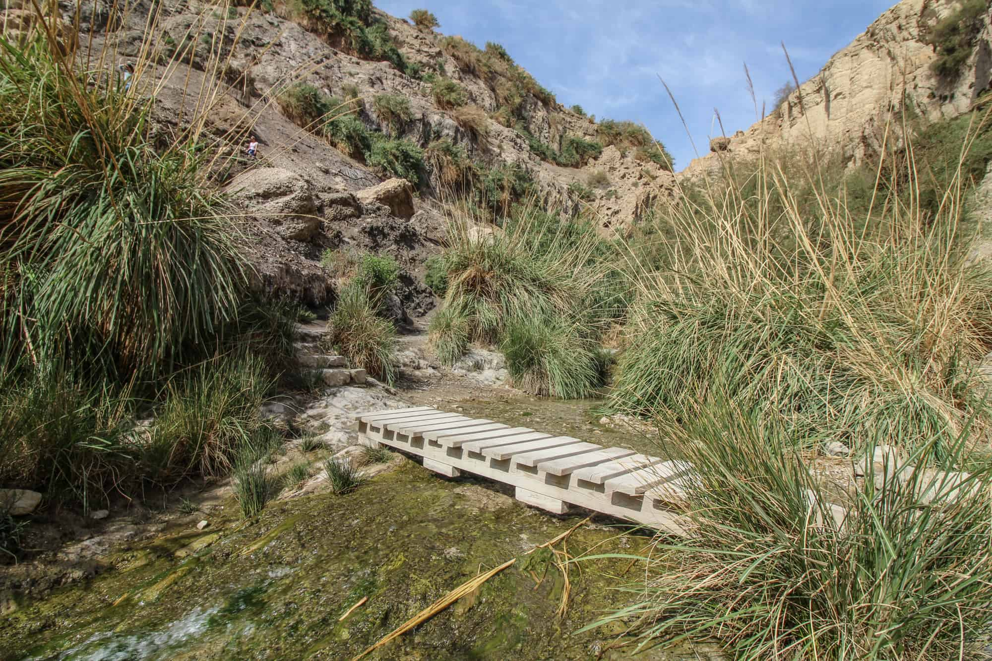 another bridge in ein gedi