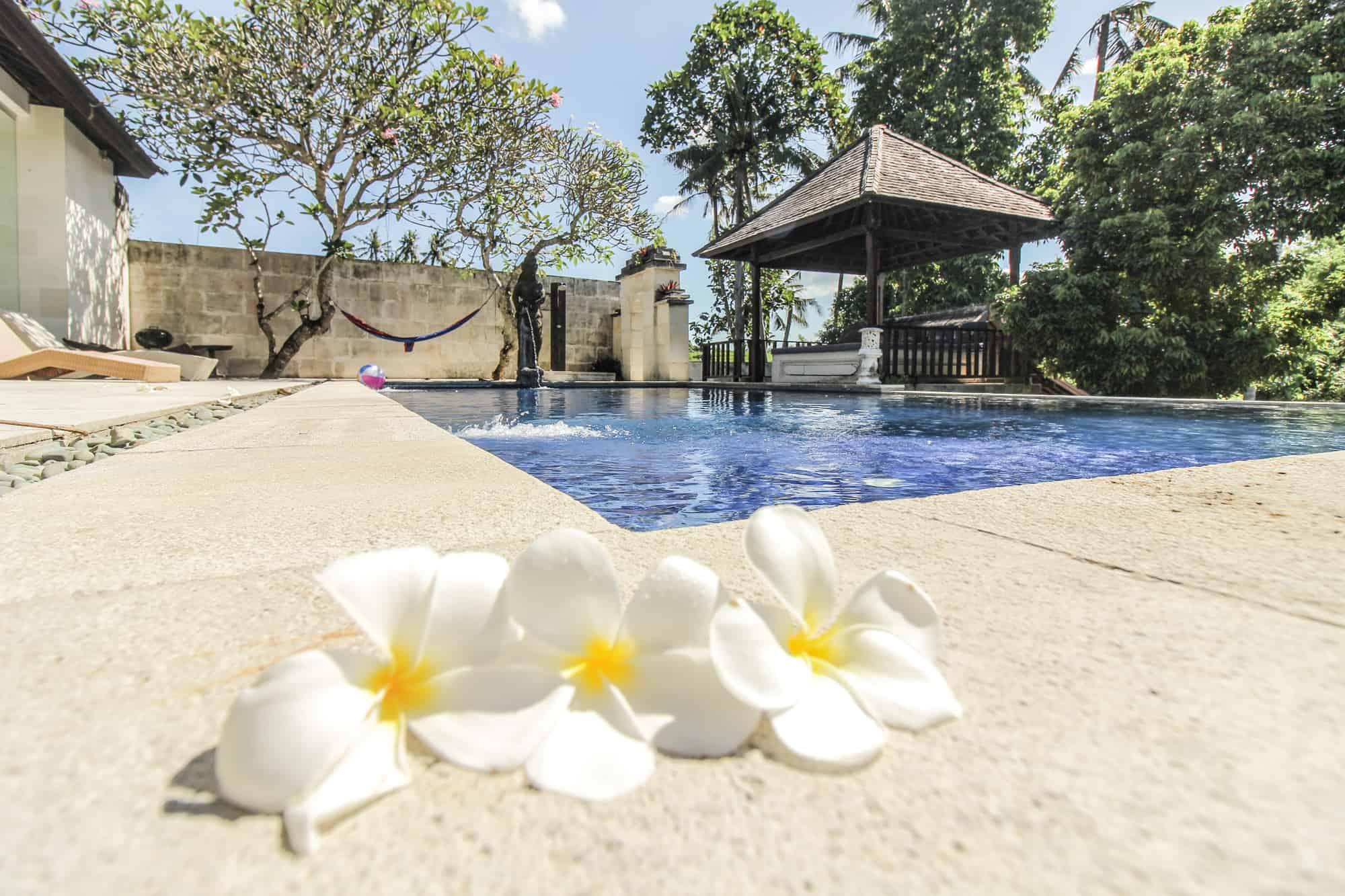 flowers pool rivendell