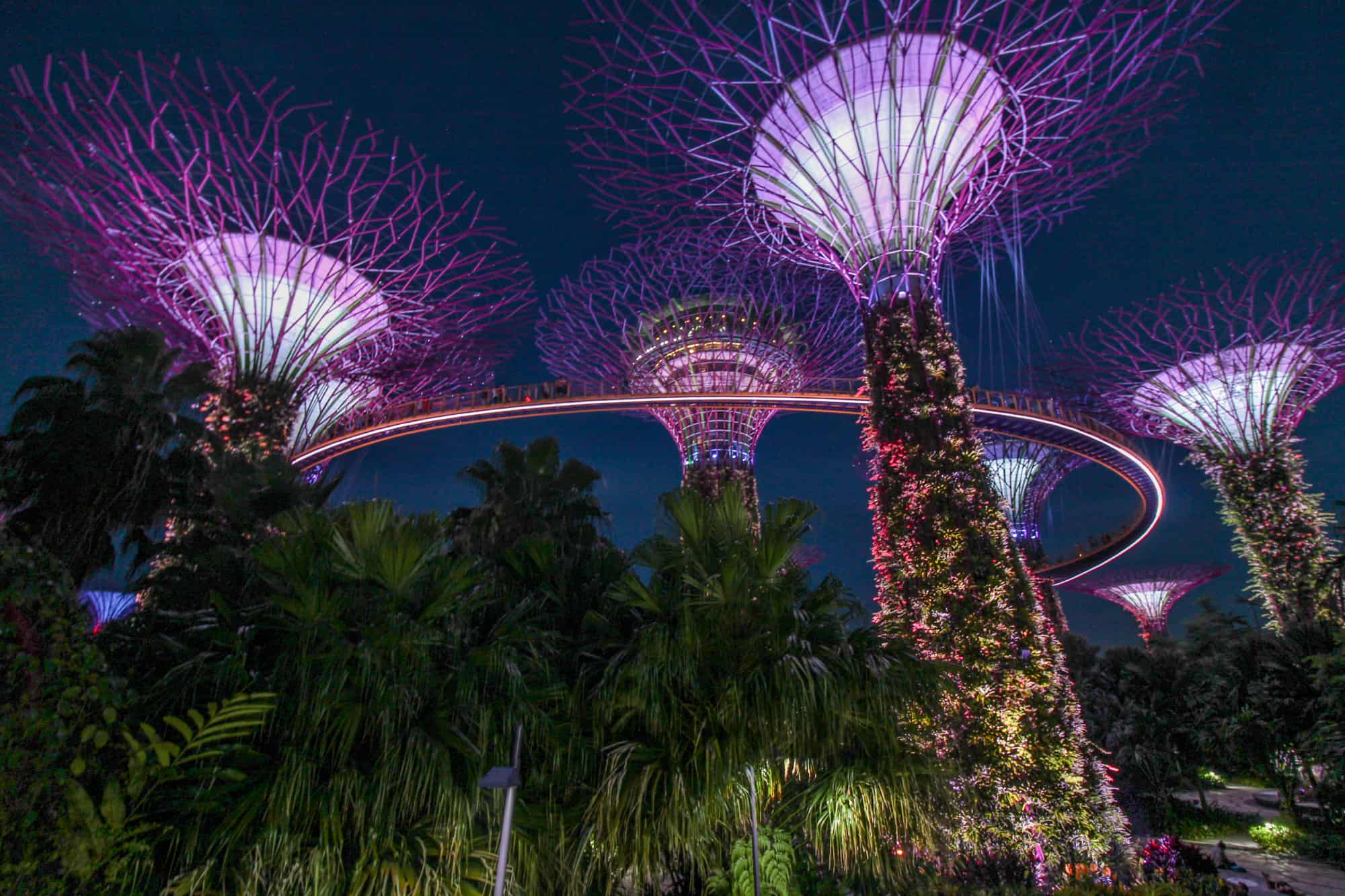 Super Trees – Gardens by the Bay