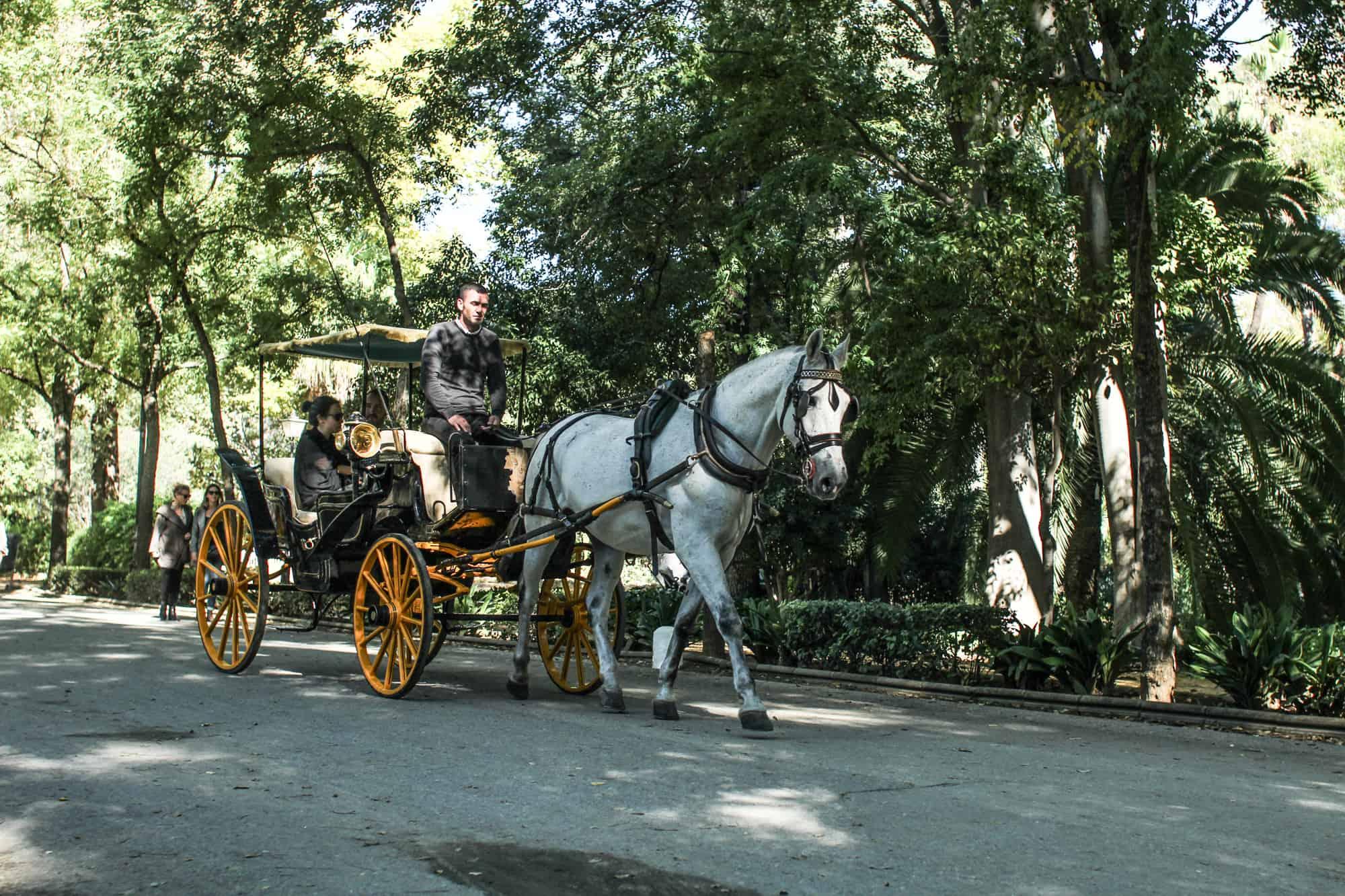 Kutsche im Park in Sevilla