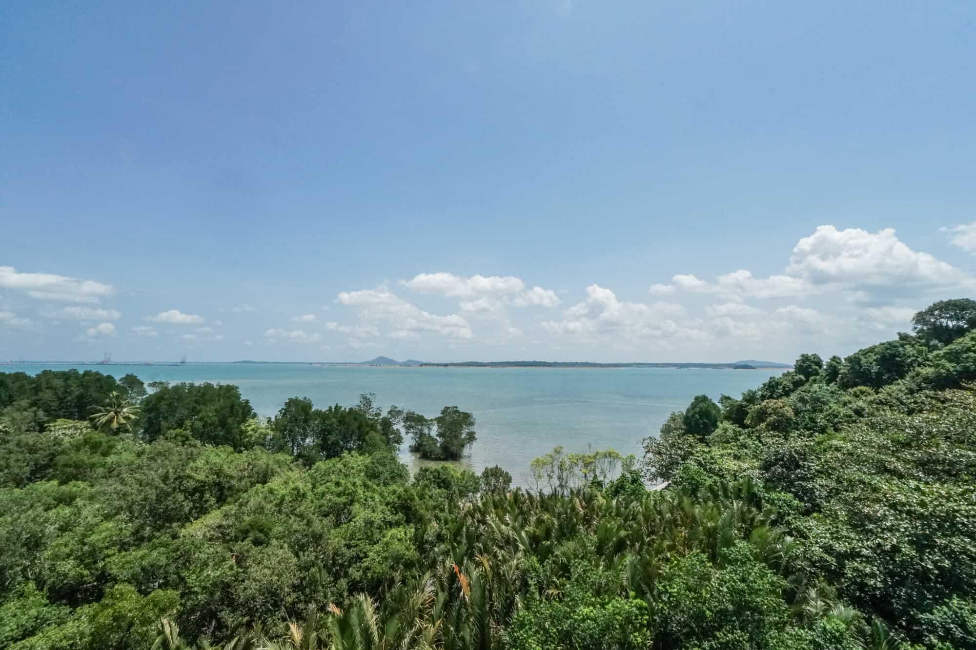 Pulau Ubin Check Jawa Wetlands Lookout