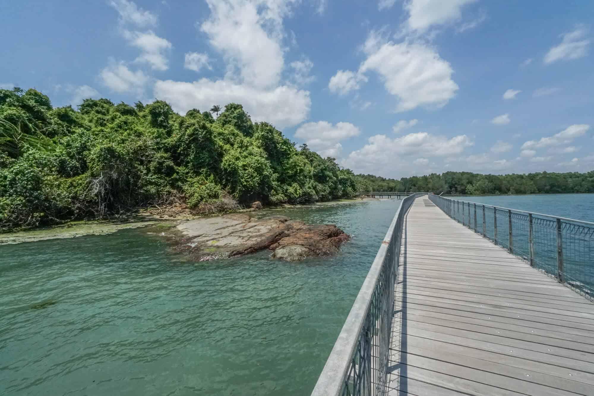Pulau Ubin Check Jawa Wetlands Boardwalk