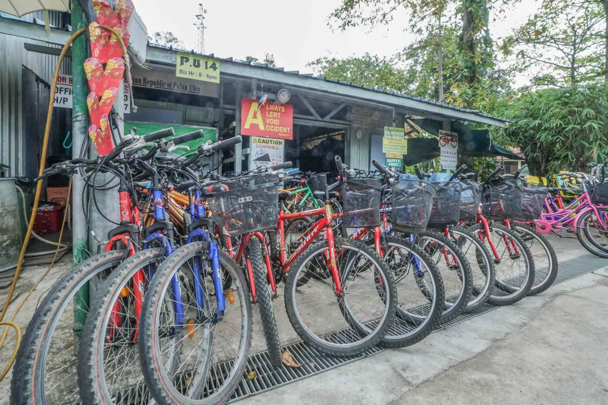 Mountainbikes Pulau Ubin