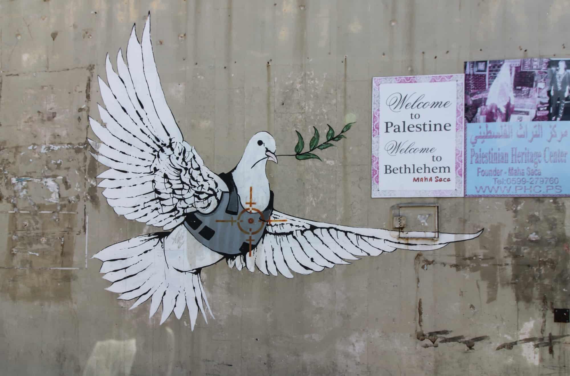 friedenstaube graffiti
