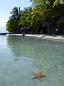 1 Playa de Estrellas in Bocas del Toro