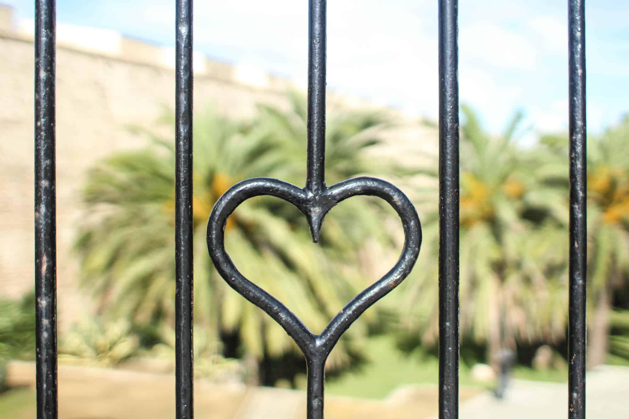 Herz Cadiz