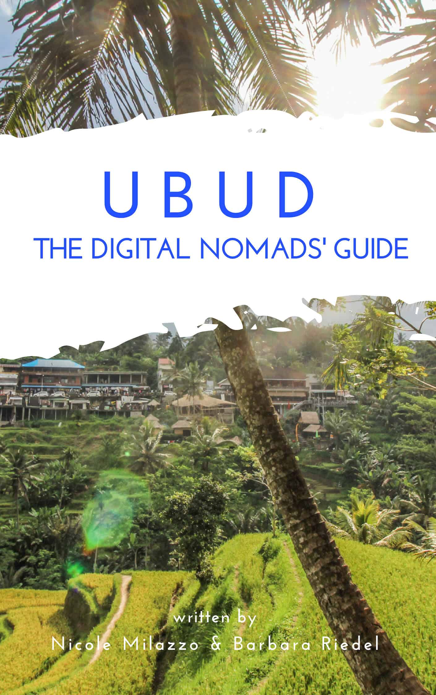 Ubud Guide for Digital Nomads