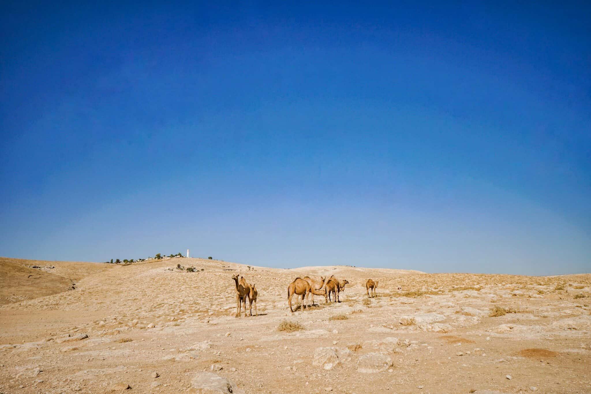 Wüste Juda – Judaean Desert