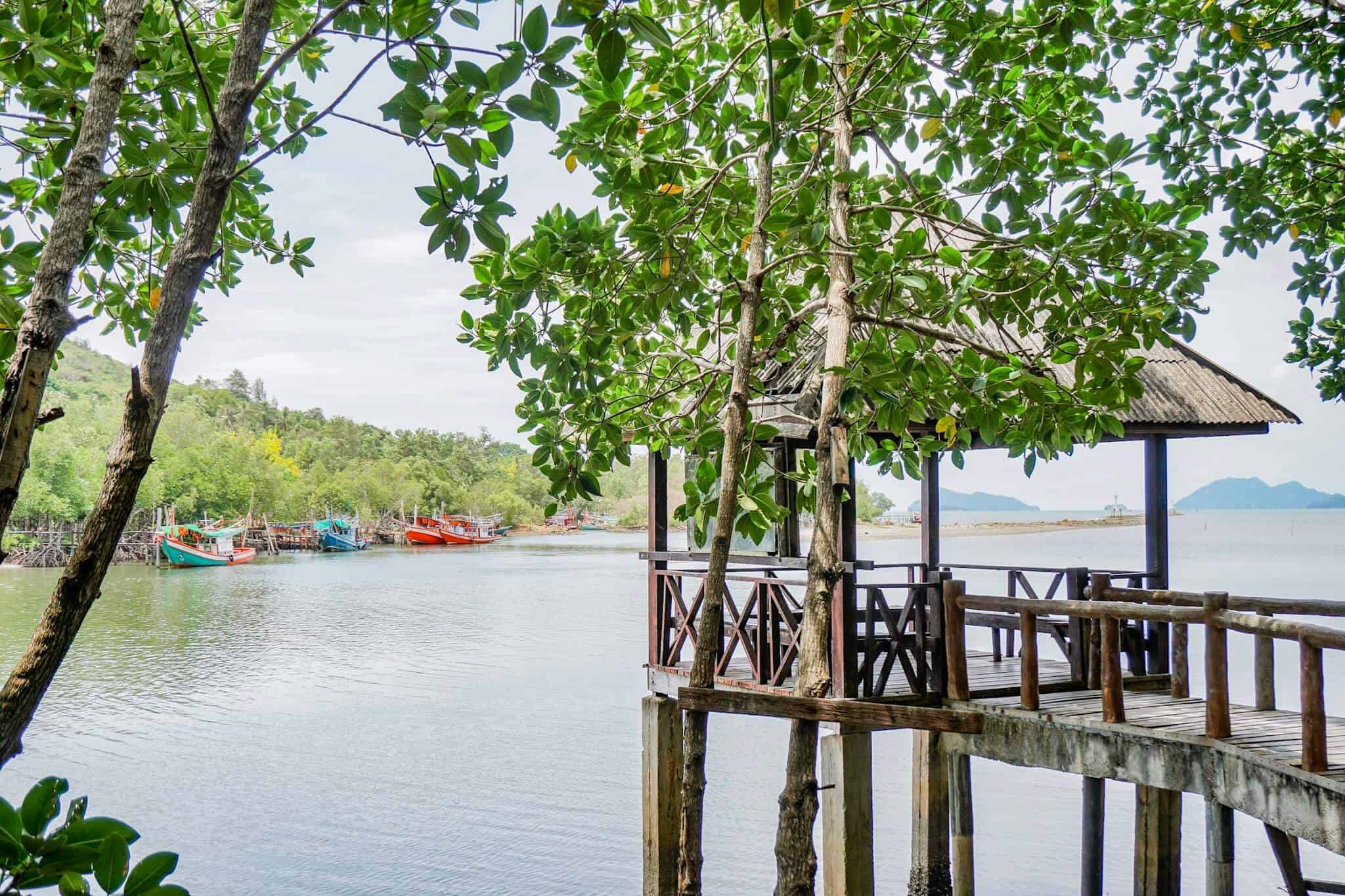 Mu Koh Chumphon National Park – The Mangroves