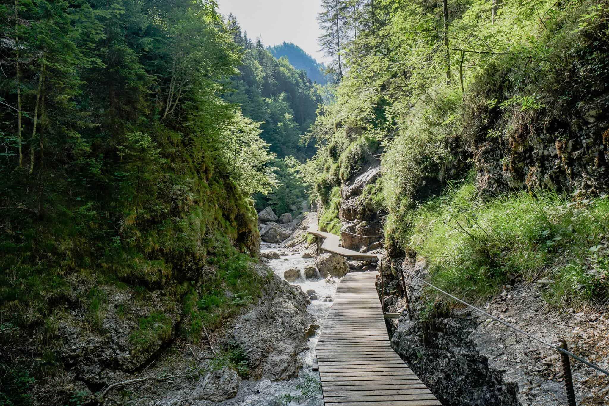 Griesbachklamm Koasa Trail
