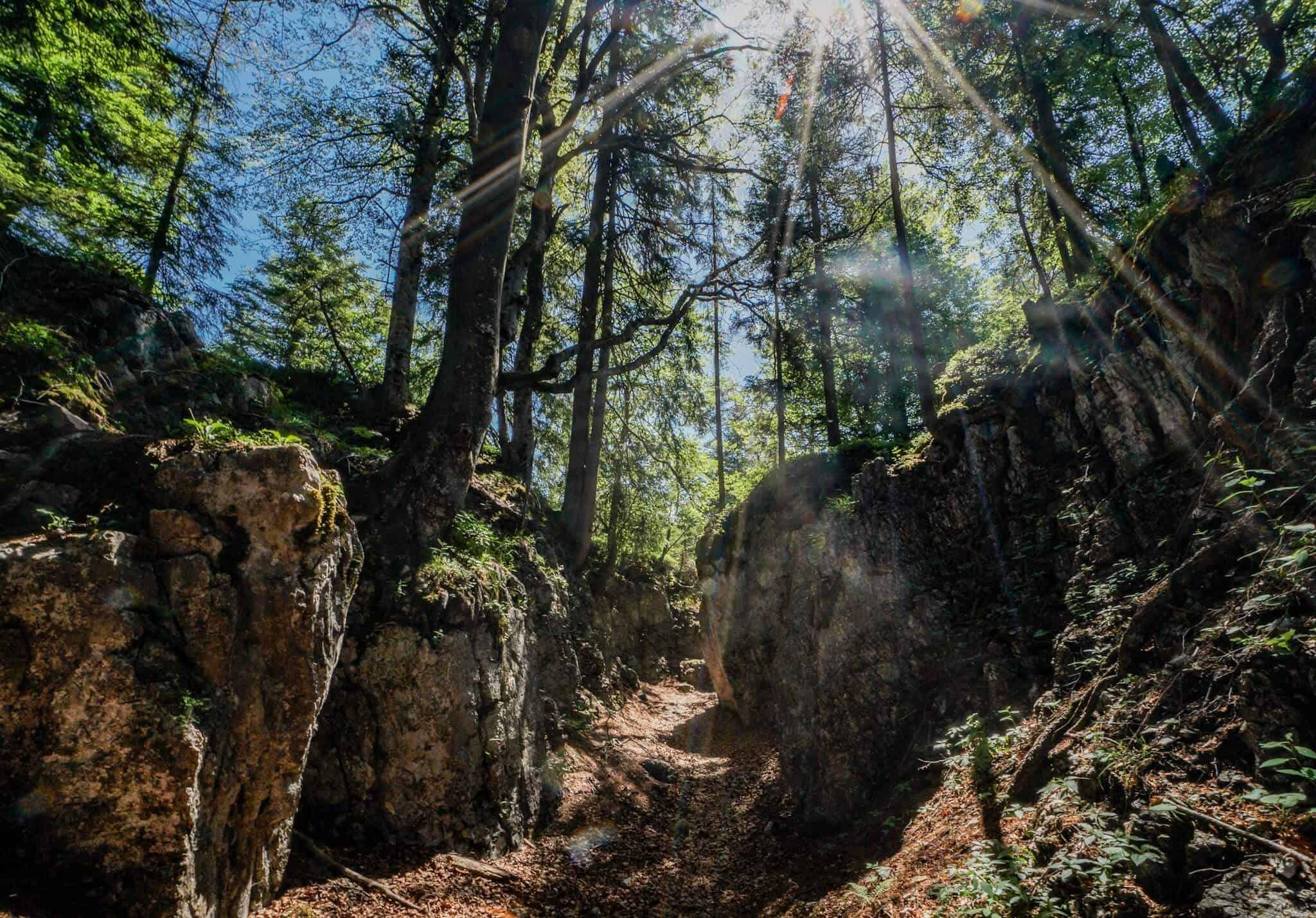 Teufelsgasse Koasa Trail