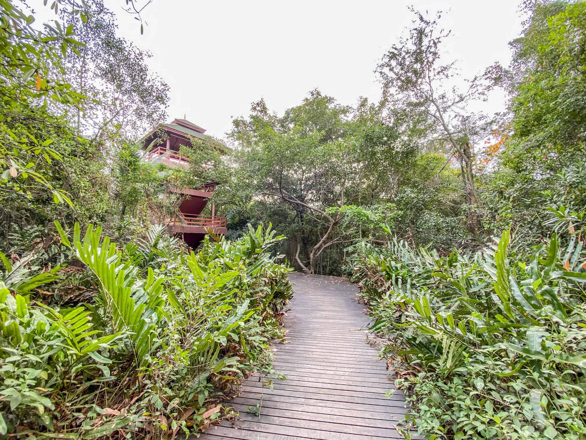 Bird Watch Tower Sri Nakhon Khueang Khan Park and Botanical Garden