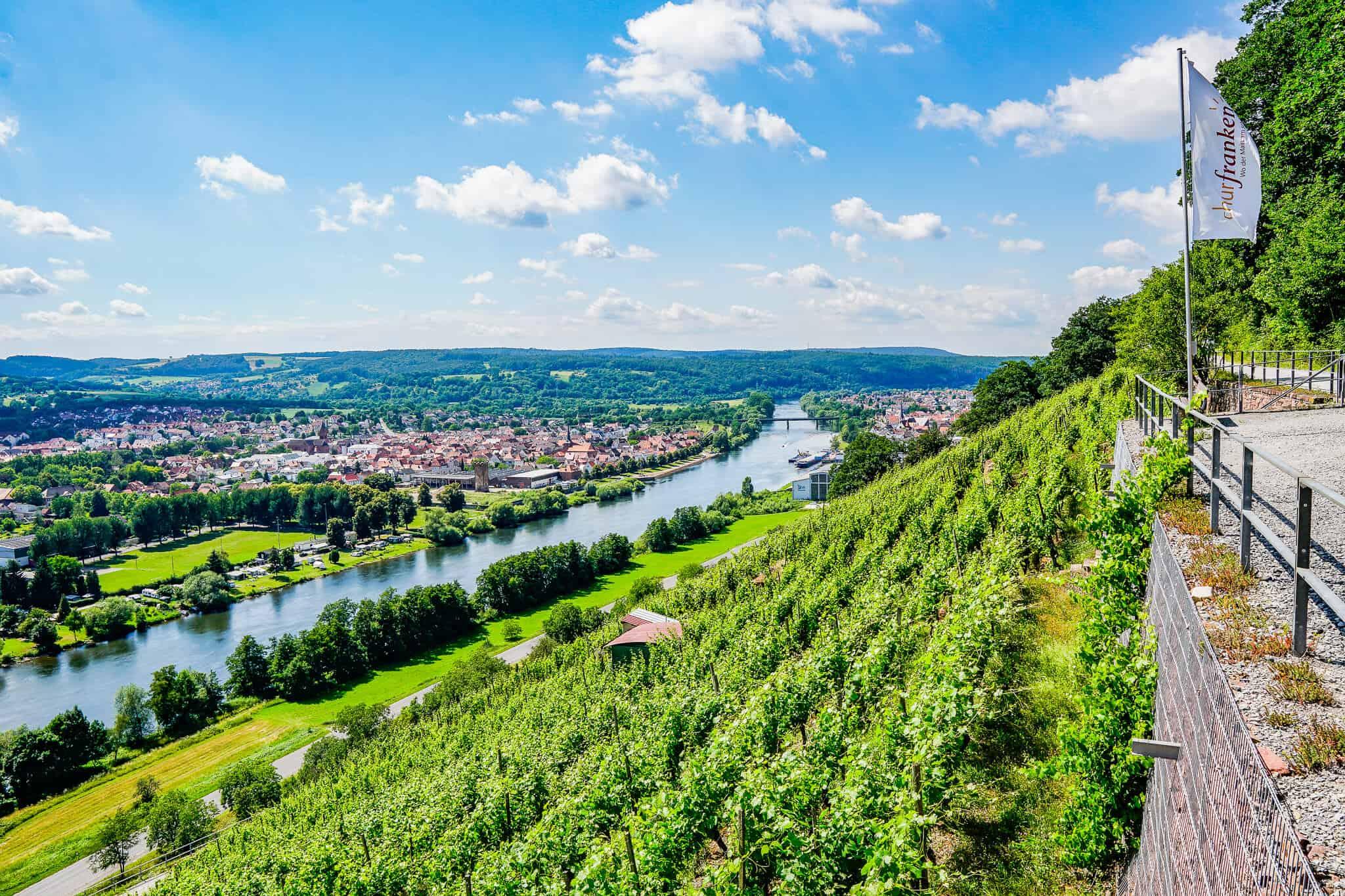 Blick ins Maintal auf dem Fränkischen Rotwein Wanderweg
