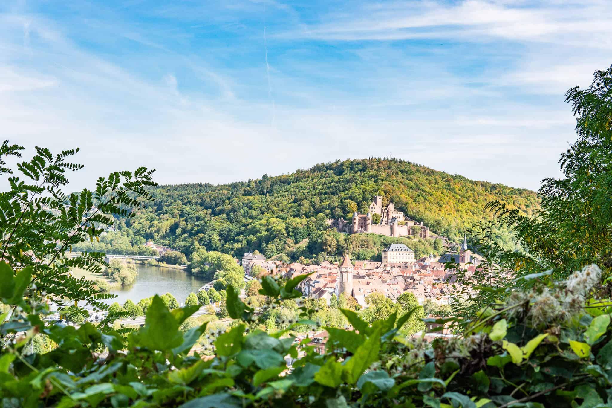 Blick auf die Burg Wertheim