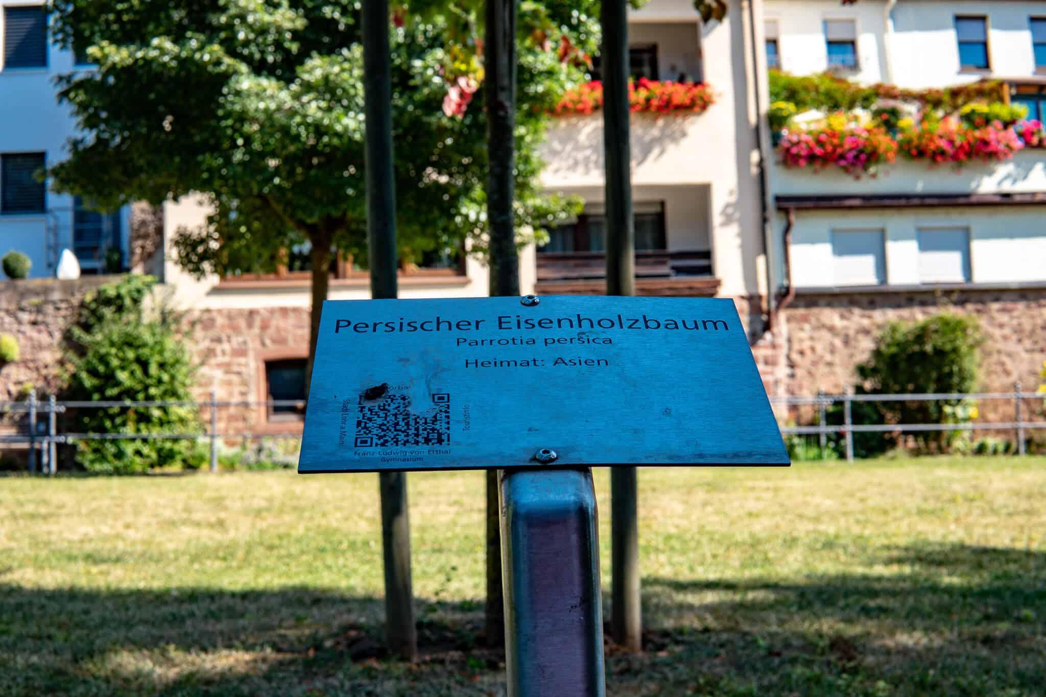 Hoerbaum Anlage Lohr am Main