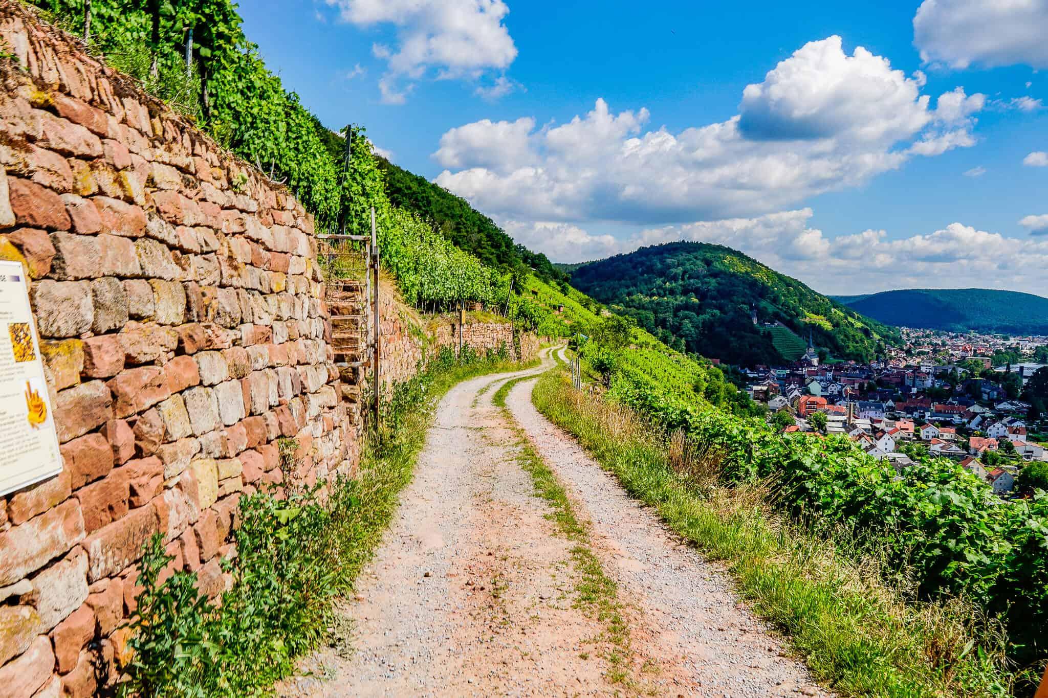 Rotwein Wanderweg Klingenberg