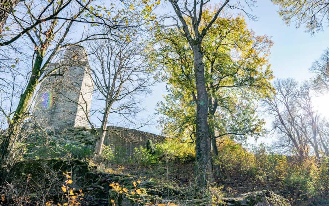 Der Drei-Burgen-Weg – Der schönste Rundweg des Taunus