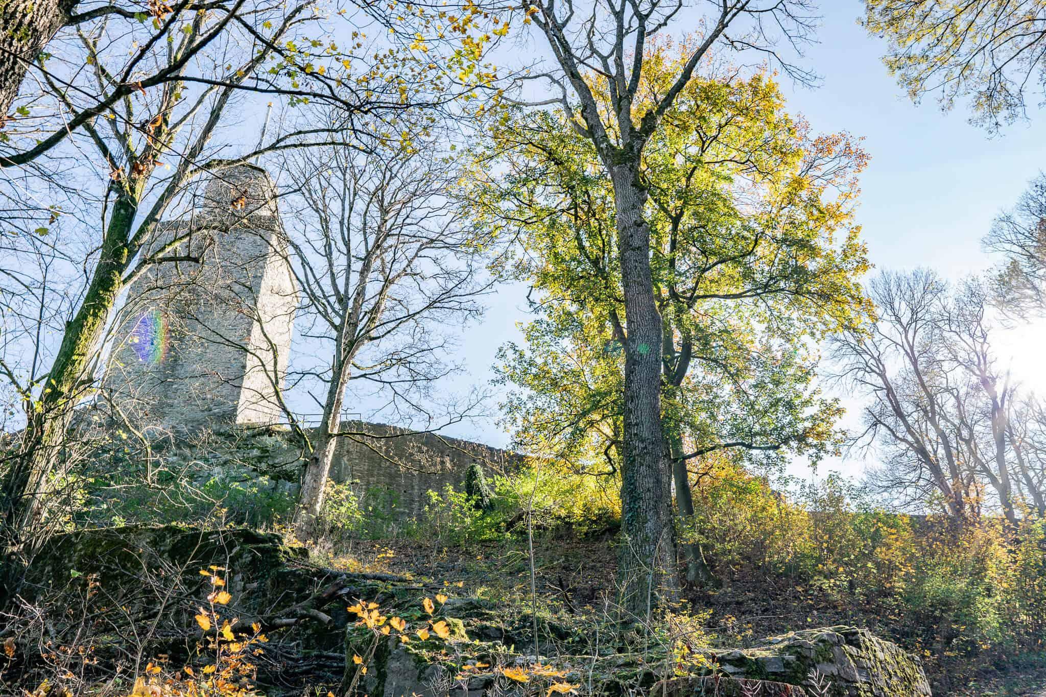 Falkensteiner Burg 2