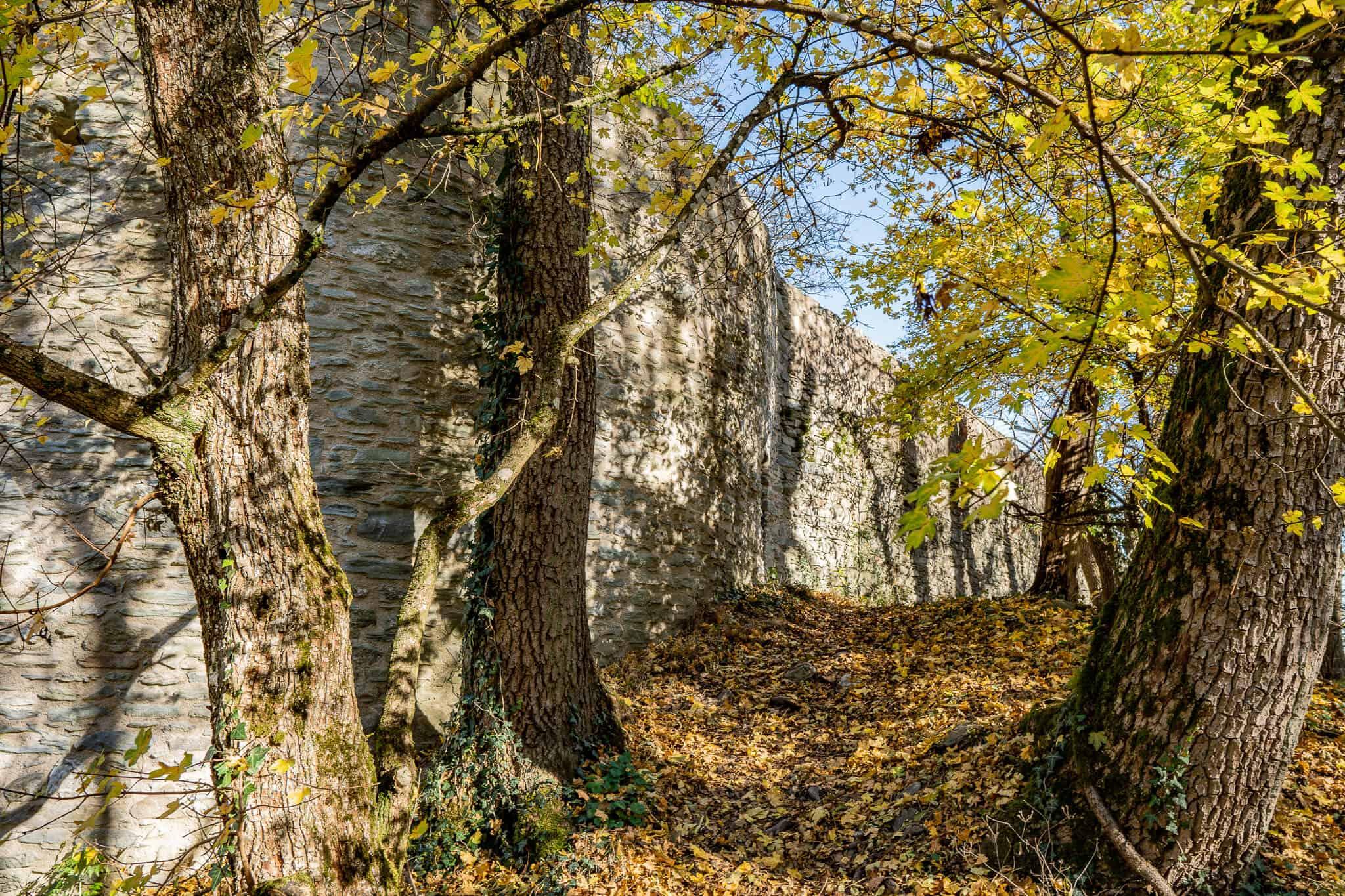 Falkensteiner Burg