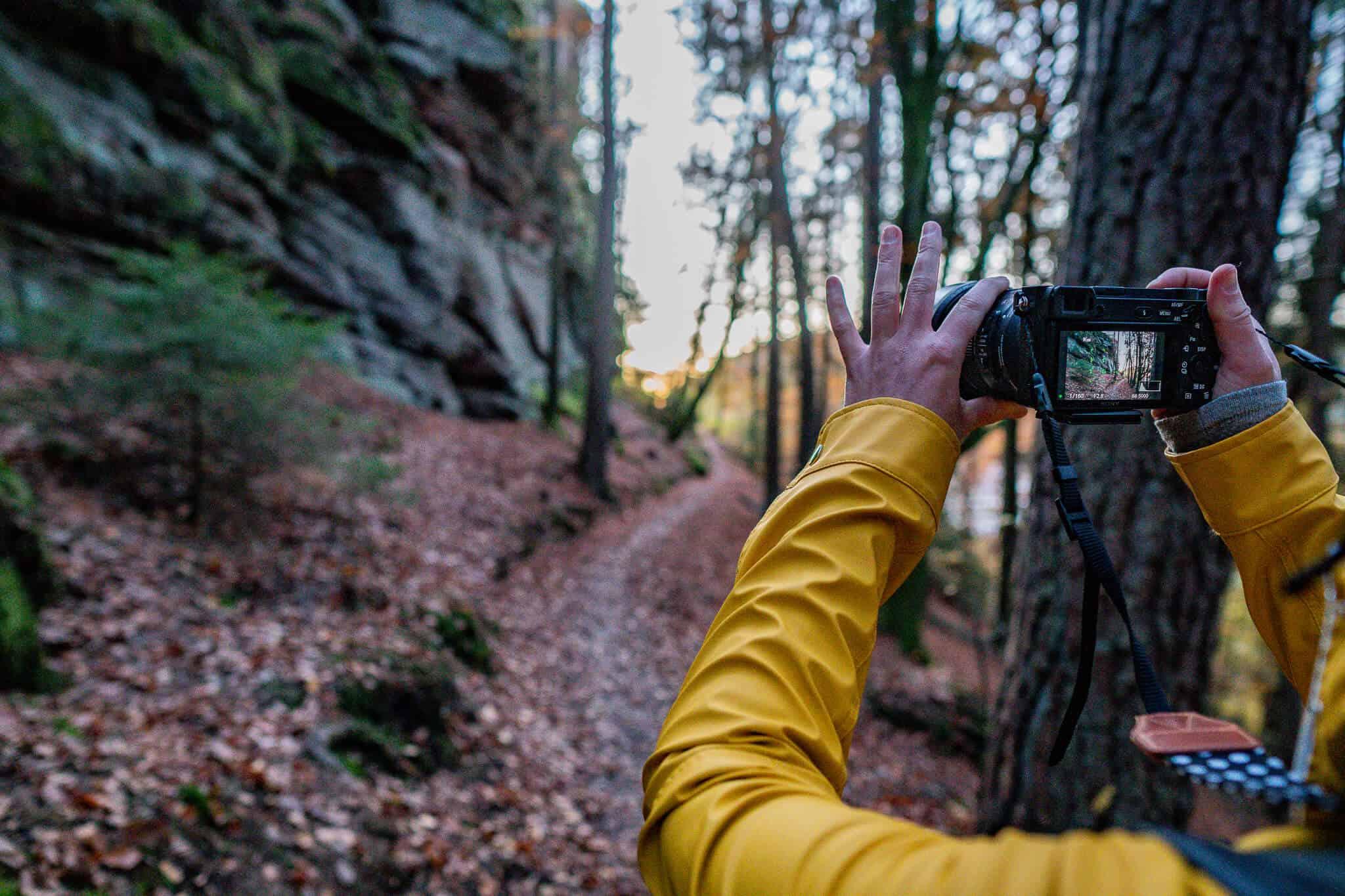 Fotos Dahner Felsenland
