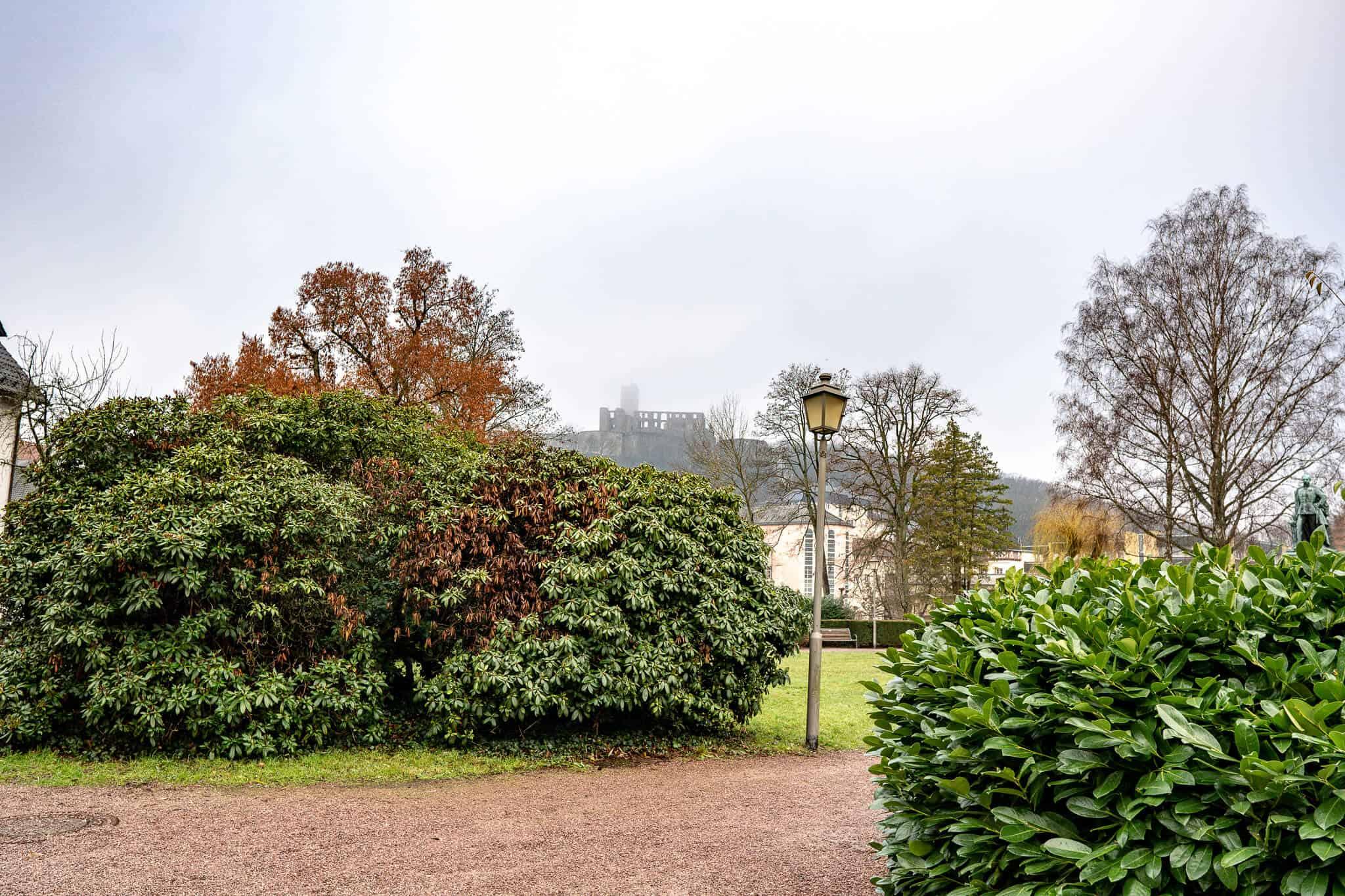 Burg Königstein im Hintergrund