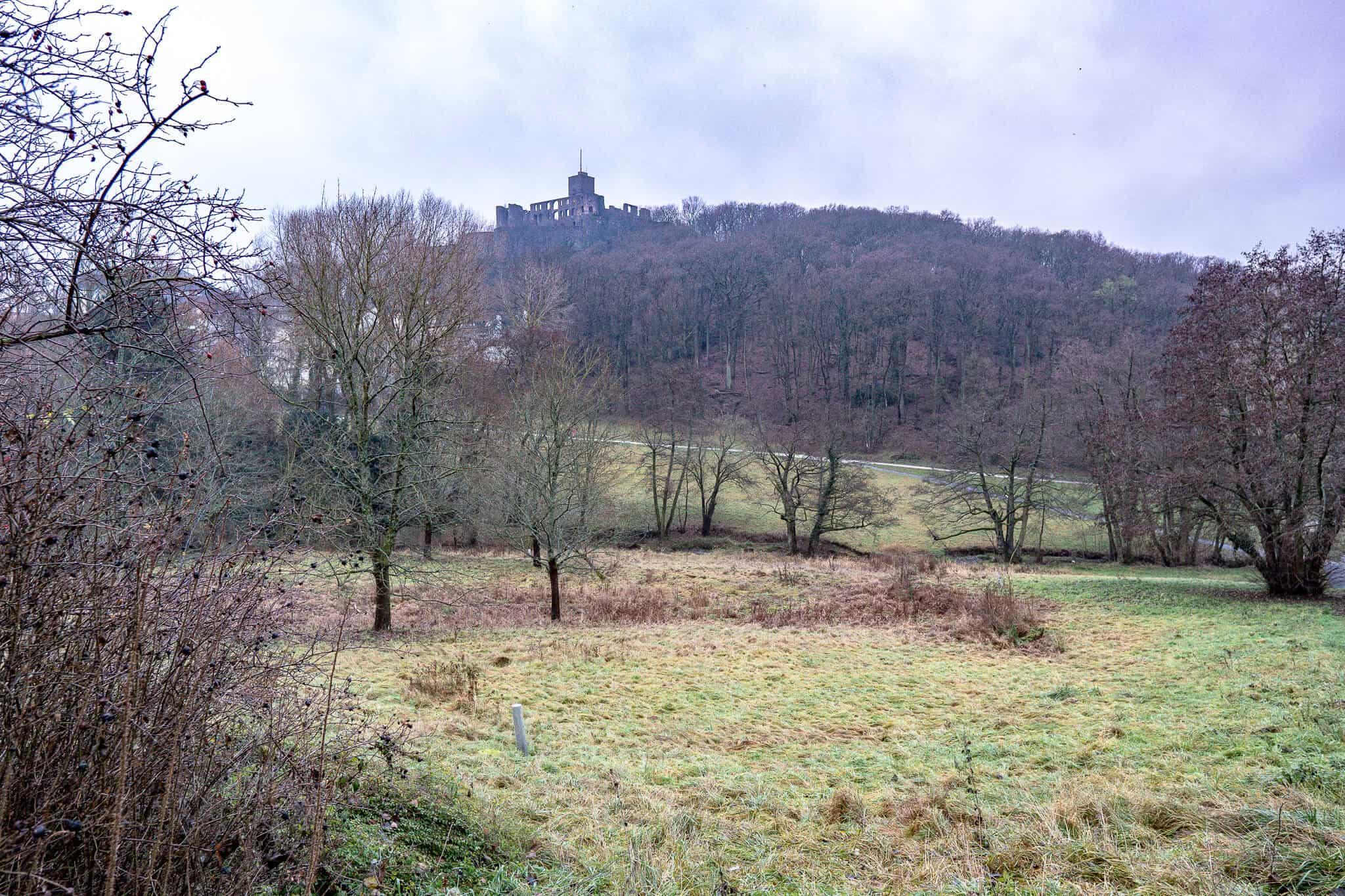 Woogtal mit Königsteiner Burg