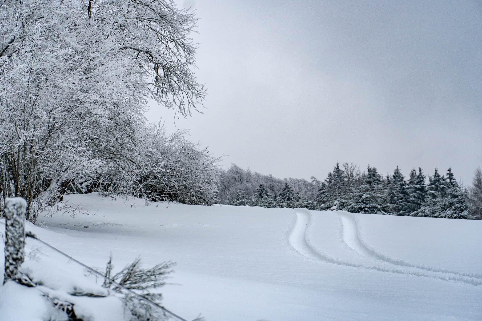Schnee am Akazienhof