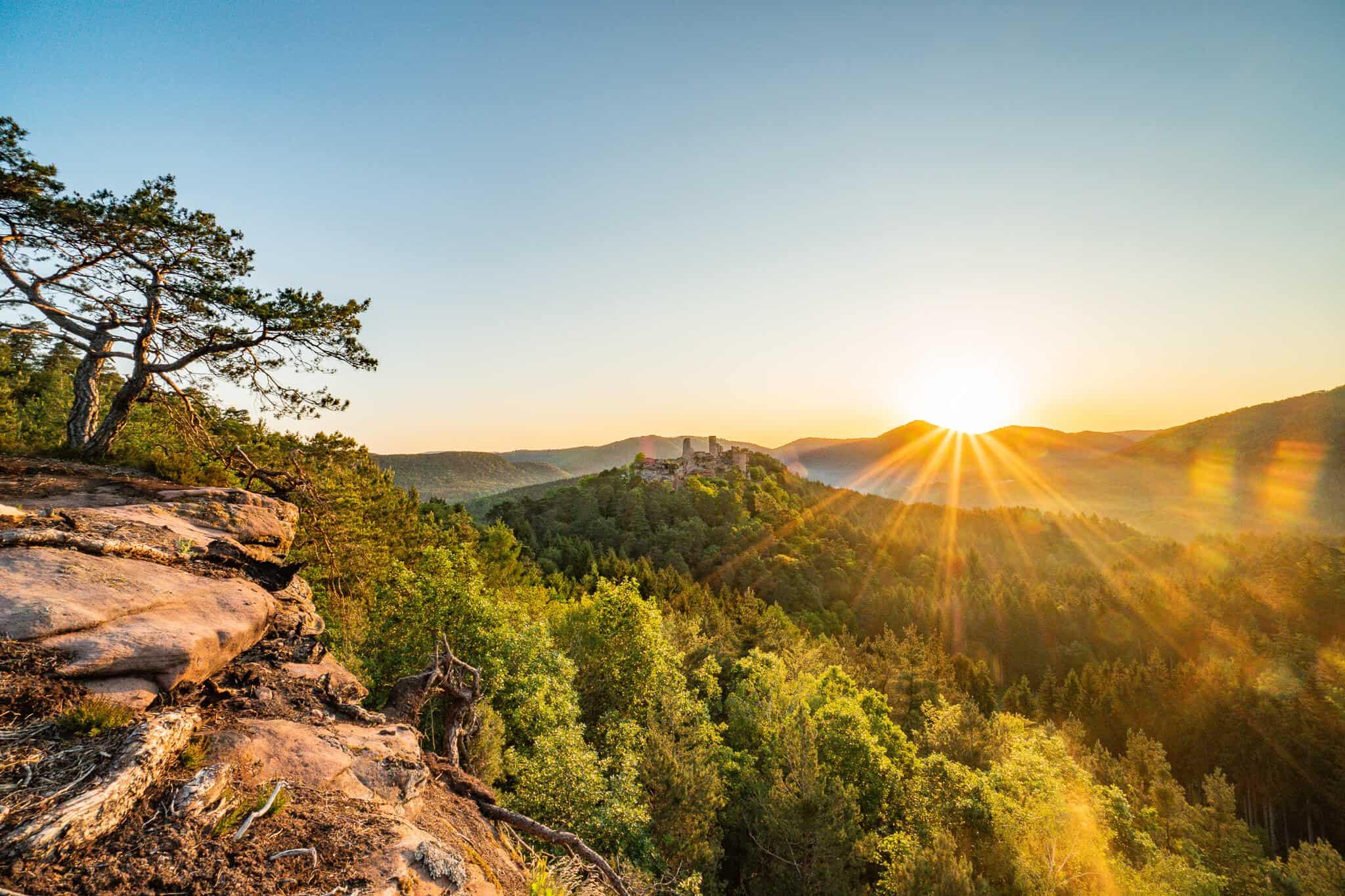 Sonnenaufgang im Pfälzerwald – Sonnenaufgang über Dahn