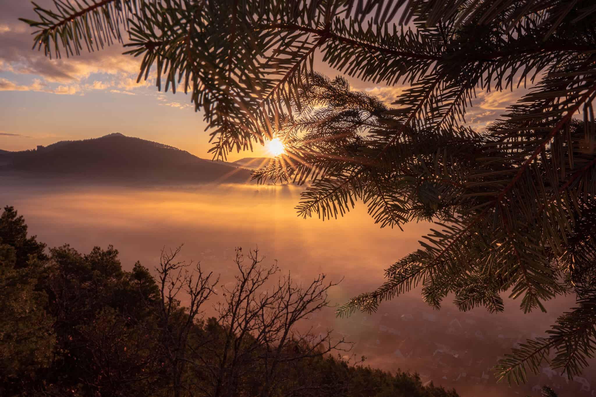 Wachtfels Sonnenaufgang Nebel