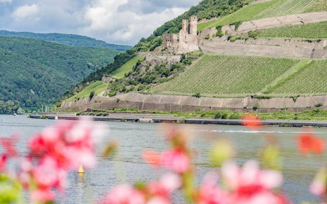 Bingen – Rhein-Romantik zwischen Reben und einer Heiligen