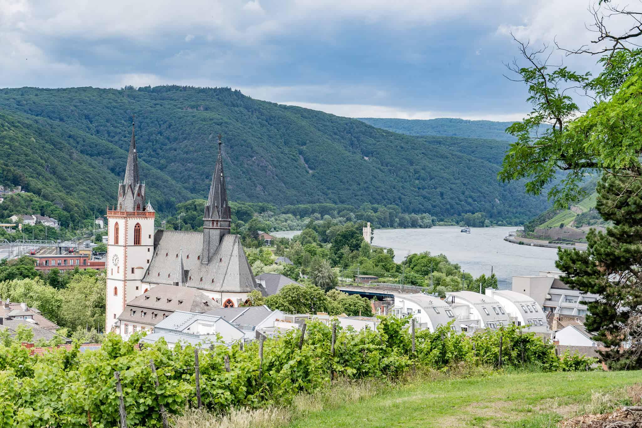 Blick auf die Basilika St Martin und das Rheintal