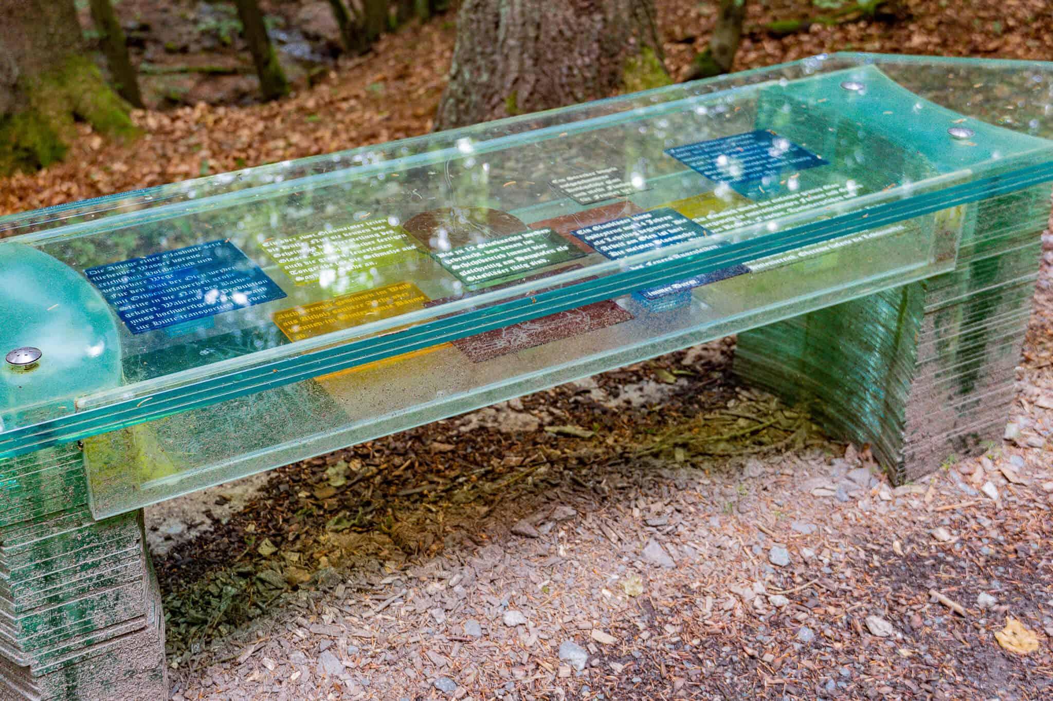 Glasbank auf dem Schinderhannes Steig